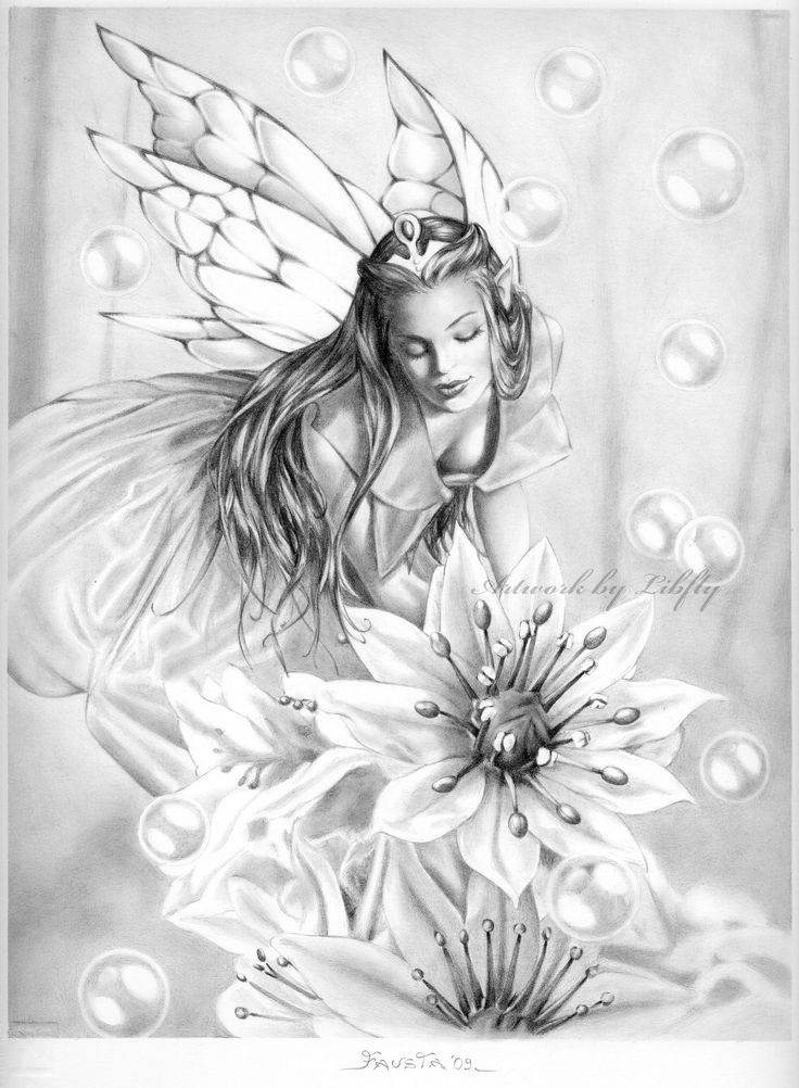 736x1002 Gallery Beautiful Pencil Drawings Of Fairies,
