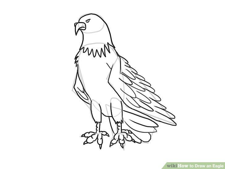 728x546 4 Ways To Draw An Eagle