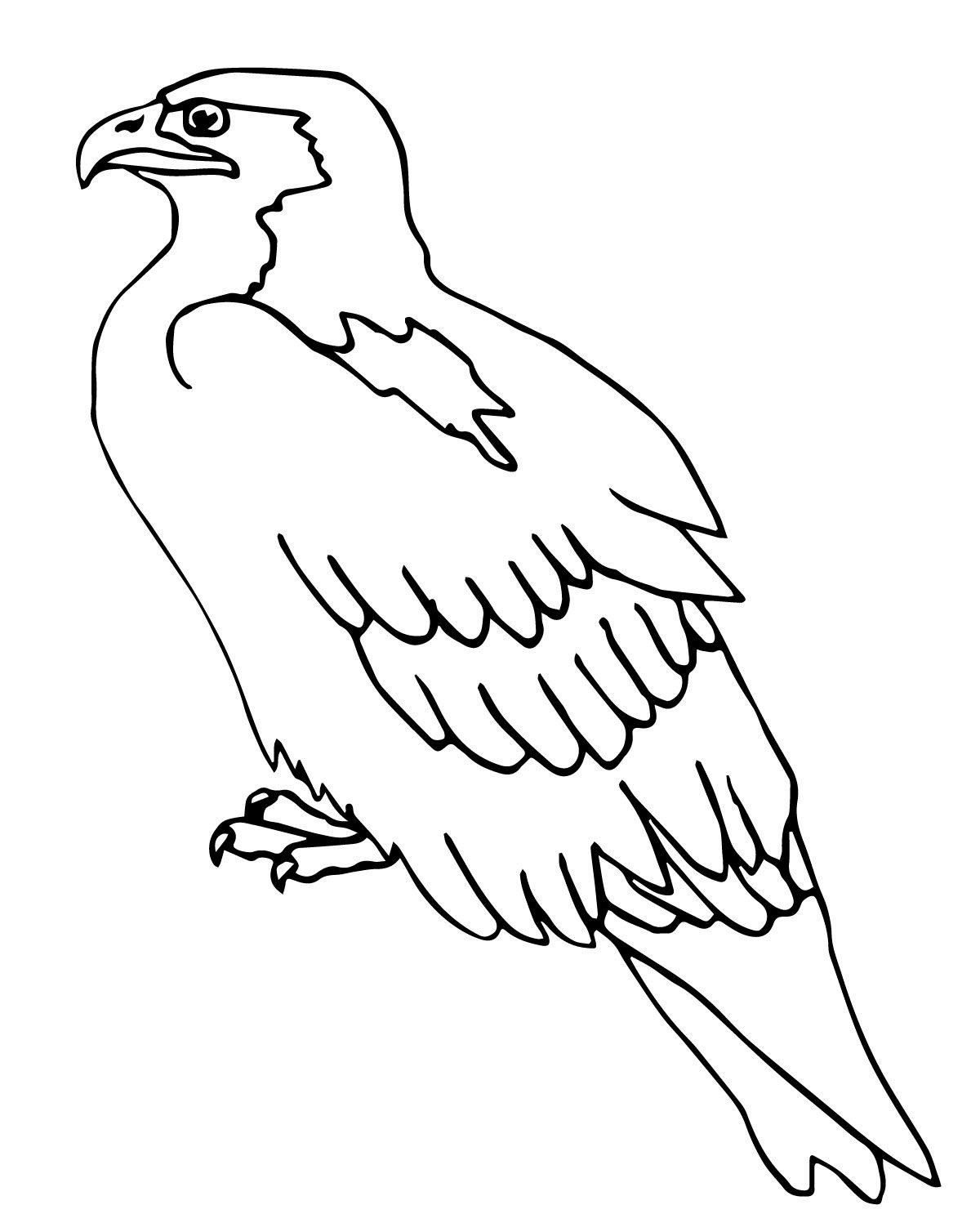 1200x1497 Bird Coloring Pages Perched Falcon Preschool Crafts