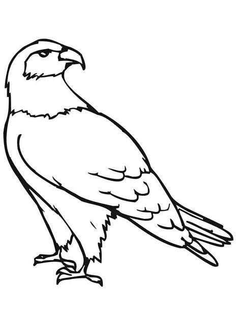 474x632 Birds Of Prey Coloring Pages Bestofcoloringcom, Peregrine Falcon