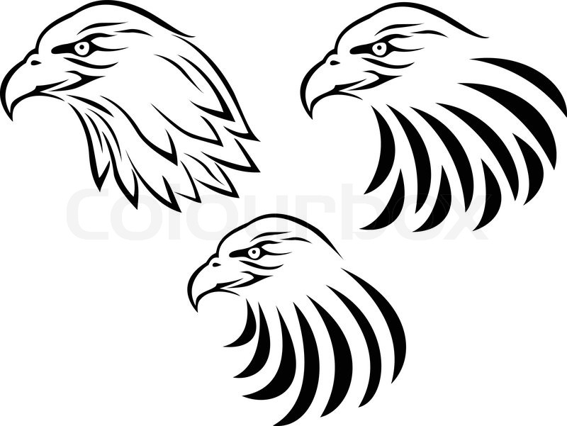 800x601 Eagle Head Tattoo Stock Vector Colourbox