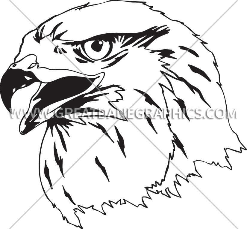 825x763 Falcon Production Ready Artwork For T Shirt Printing