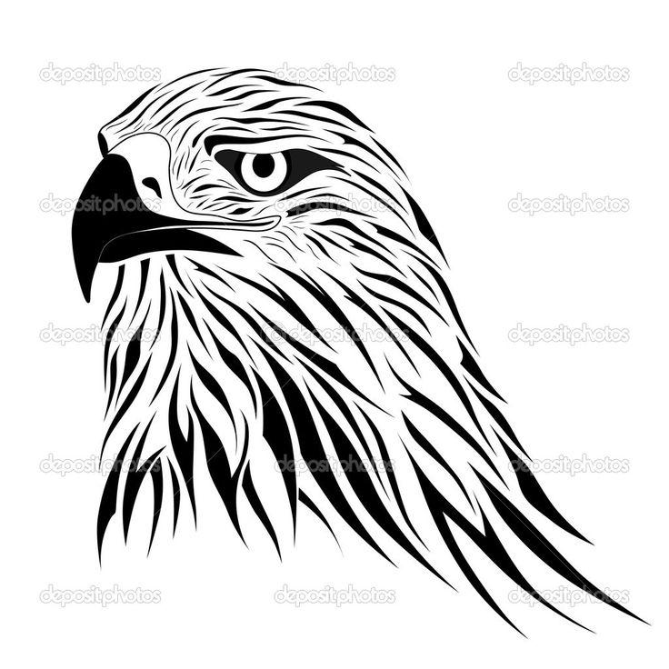 736x736 369 Best Hawk Tattoo Ideas Images On Hawk Tattoo