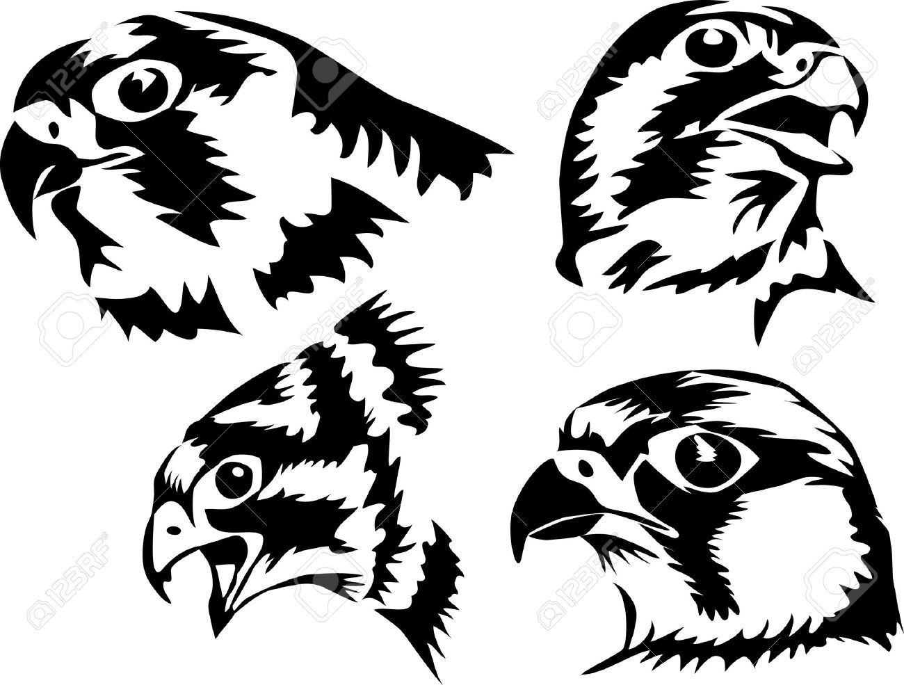 1300x985 Head Of The Falcon Royalty Free Cliparts, Vectors, And Stock