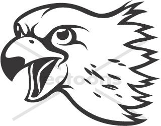 320x250 Peregrine Falcon Head In Black