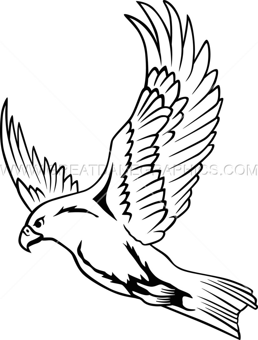 Falcon Line Drawing at GetDrawings.com | Free for personal ...