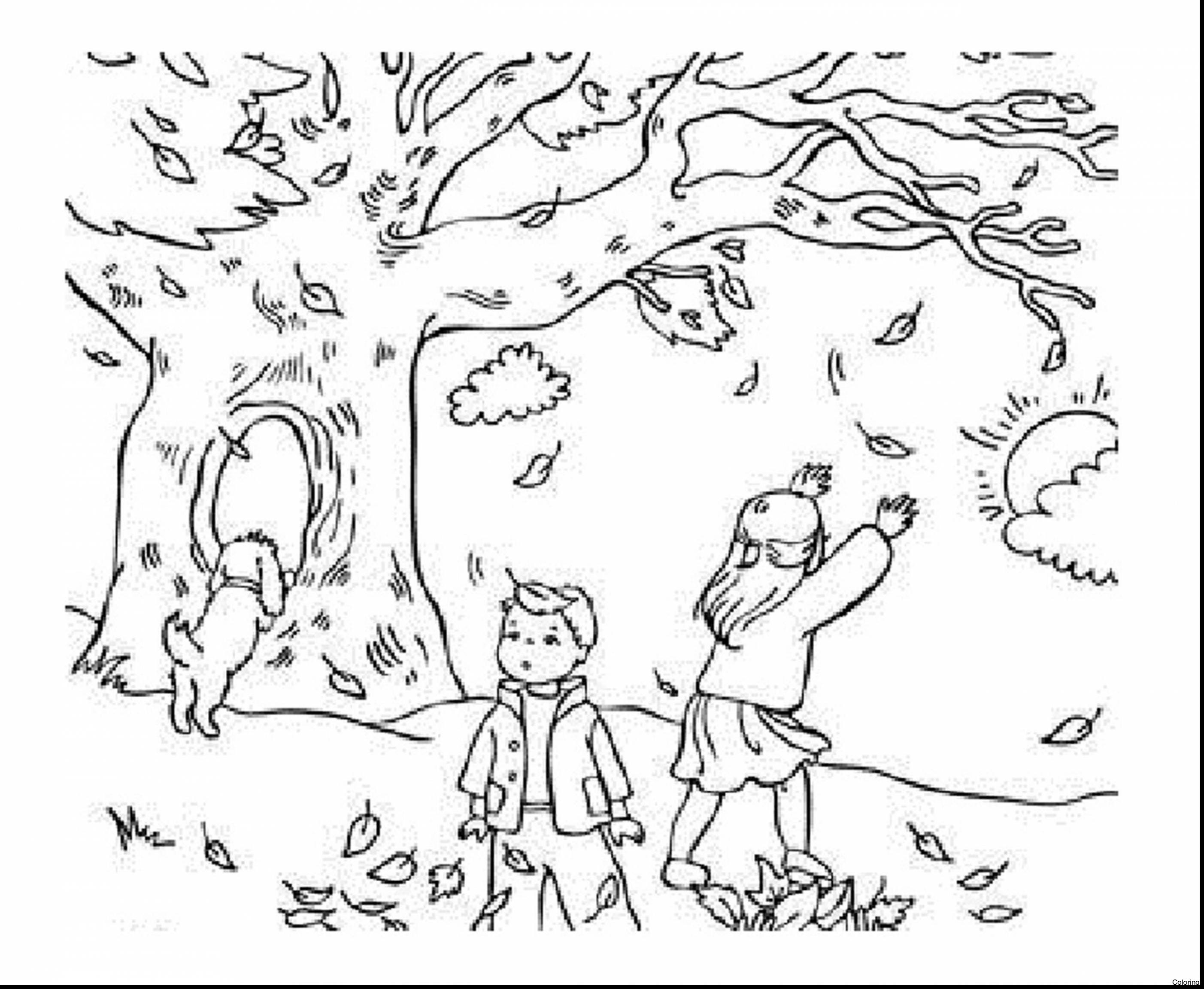 2805x2305 Inspirational Fall Leaves Coloring Pages 98 On Line Drawings