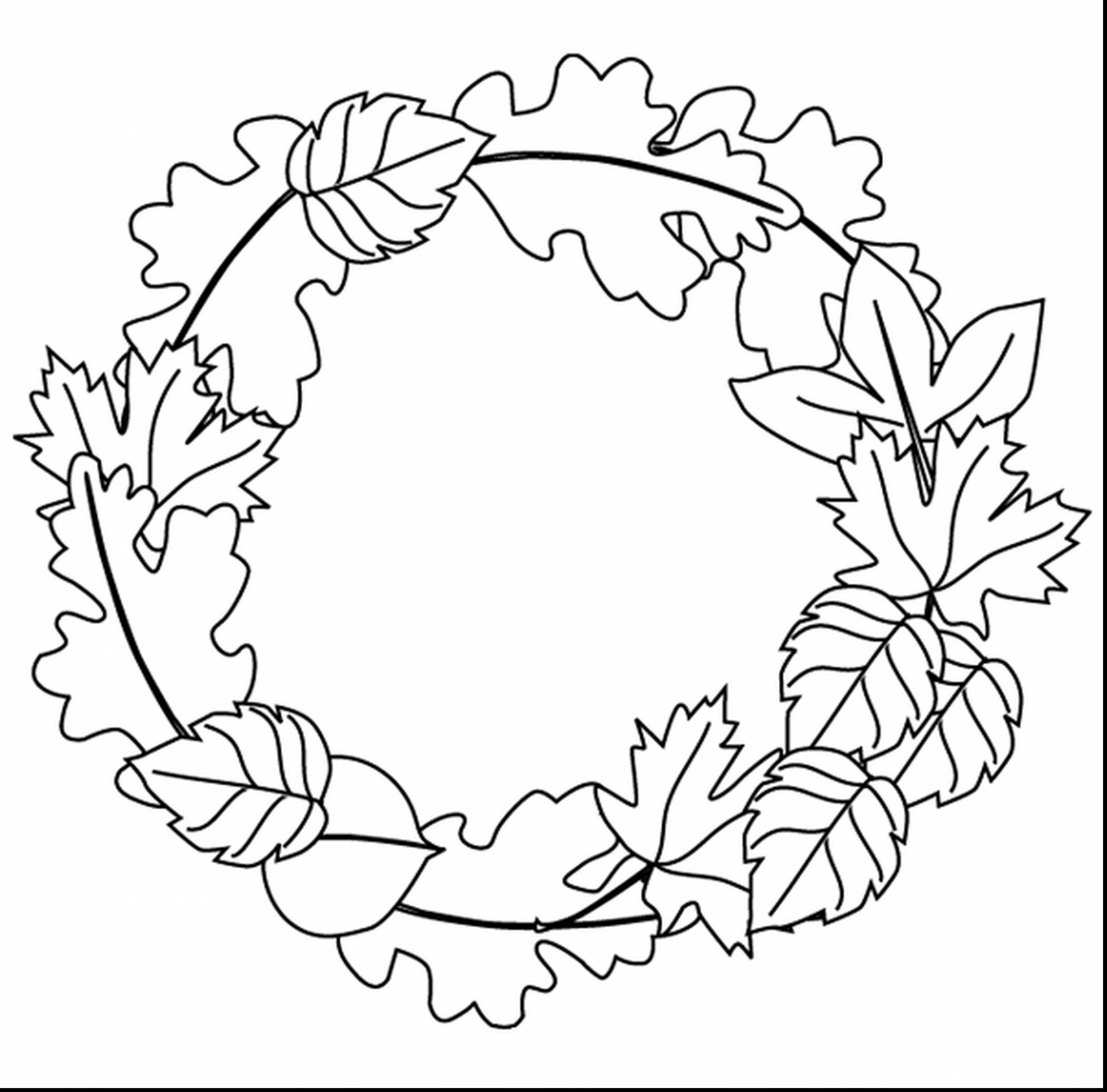 2805x2767 Terrific Fall Leaves Line Drawing With Fall Leaves Coloring Pages