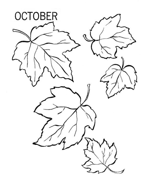 Fall Drawing Pictures at GetDrawings.com | Free for personal use ...