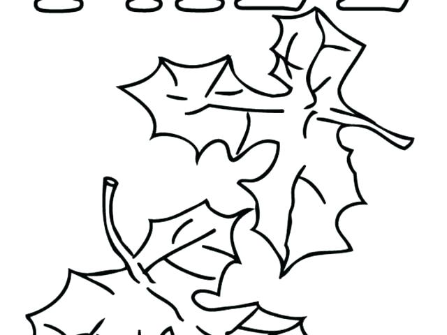 640x480 Leaf Coloring Fall Maple Leaf Coloring Page Palm Leaf Coloring