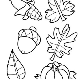 300x300 Autumn Leaves Coloring Page Free Download