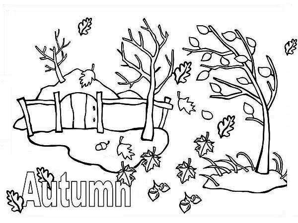 Seasonal Coloring Pages Weathergramme Fall Season Drawing At GetDrawingscom Free For Personal Use