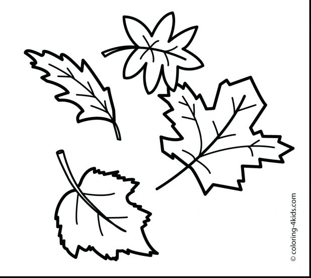 Fall Tree Drawing At Getdrawings Free For Personal Use Fall