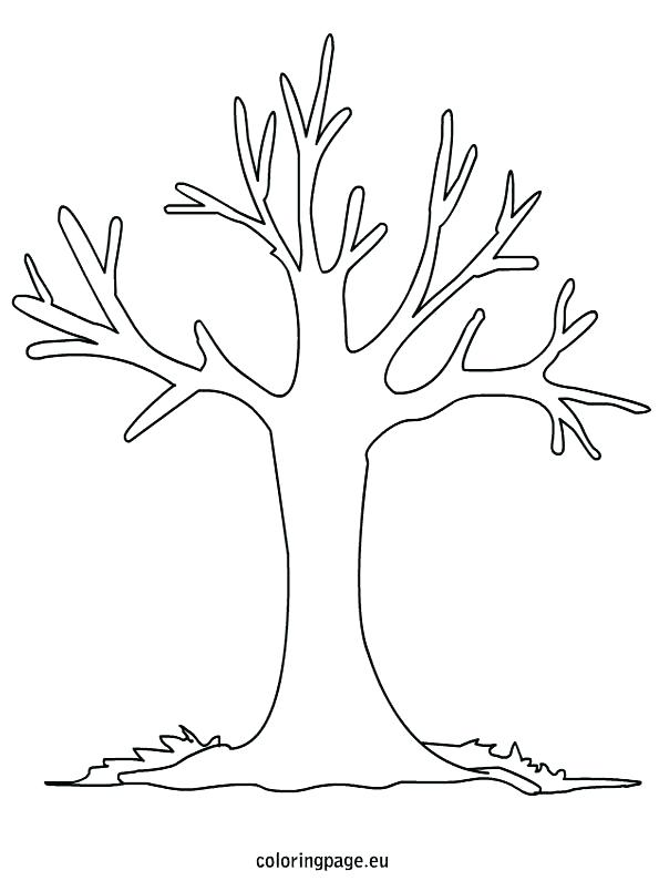 595x804 Fall Tree Coloring Pages To Print Coloring
