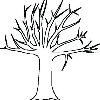 350x350 Fall Tree Coloring Sheet Tree Without Leaves Of Bare Tree Coloring