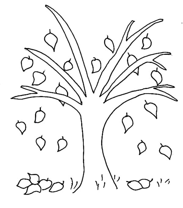 Fall trees drawing at free for personal for Fall tree coloring page