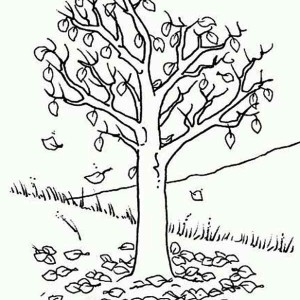 300x300 Big Trees In Autumn With Fall Leaf Coloring Page Color Luna