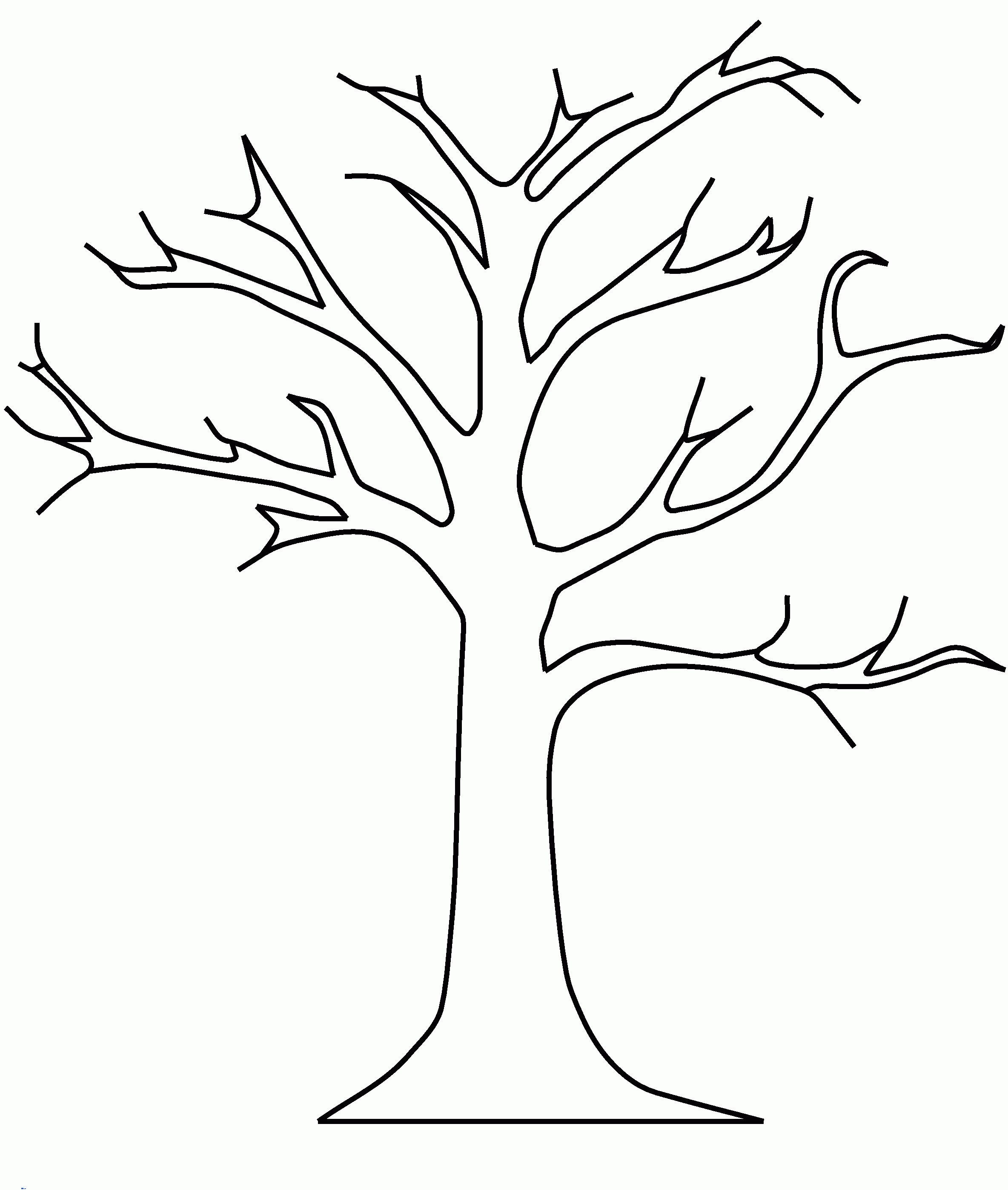 2368x2794 Coloring Pages For Fall Trees Fresh Simple Tree Coloring Pages