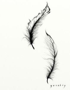 236x301 Art Feather Tattoo Sketch By