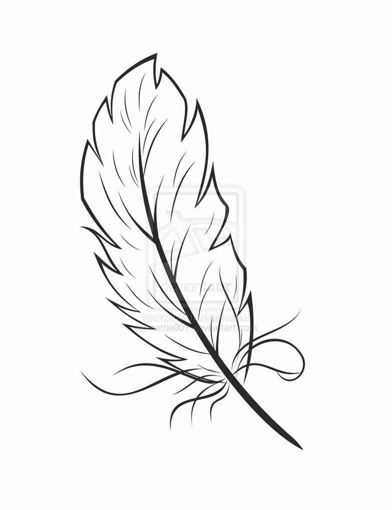 783x1020 Feather Graphic Feather Graphic By ~nettie001