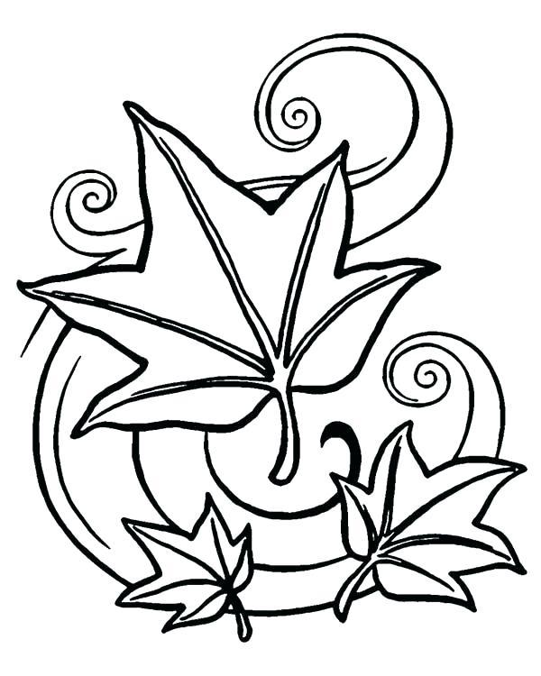 Falling Leaf Drawing