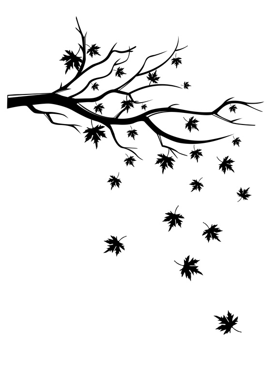 566x801 Falling Leaves Wall Decals Falling Leaves, Wall Decals And Leaves