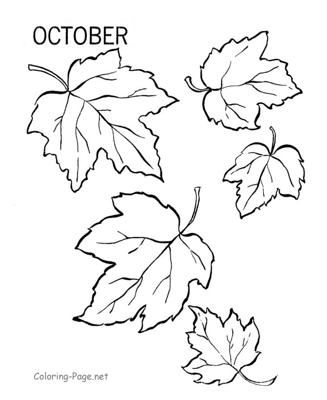 Falling Leaf Drawing At GetDrawings Free Download