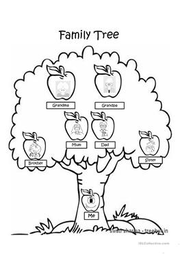 Family Tree Drawing