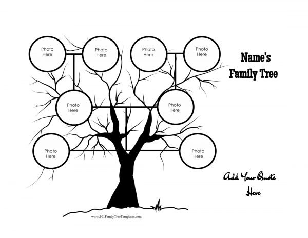 Family tree drawing at free for personal for Draw a family tree template