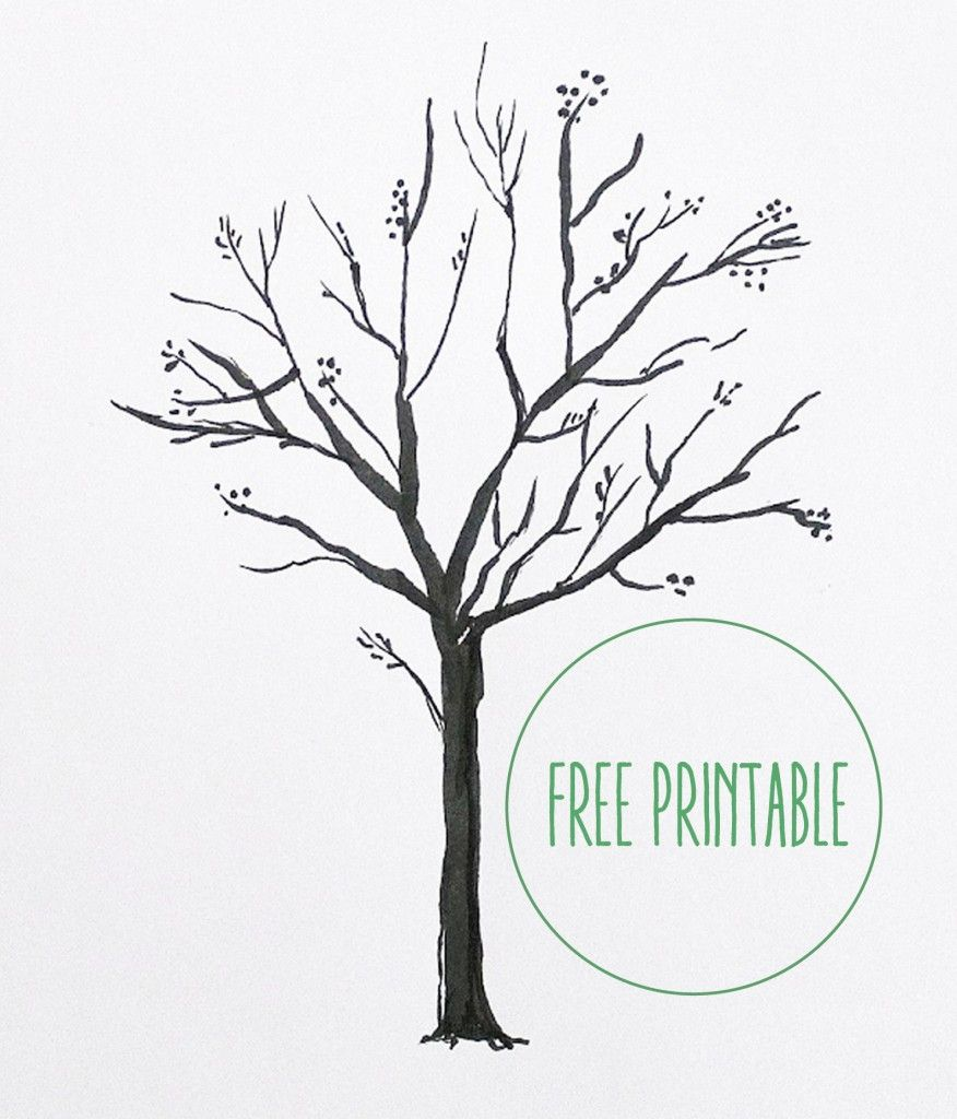 876x1024 Free Printable! Blank Family Tree, Family Trees And Free Printable