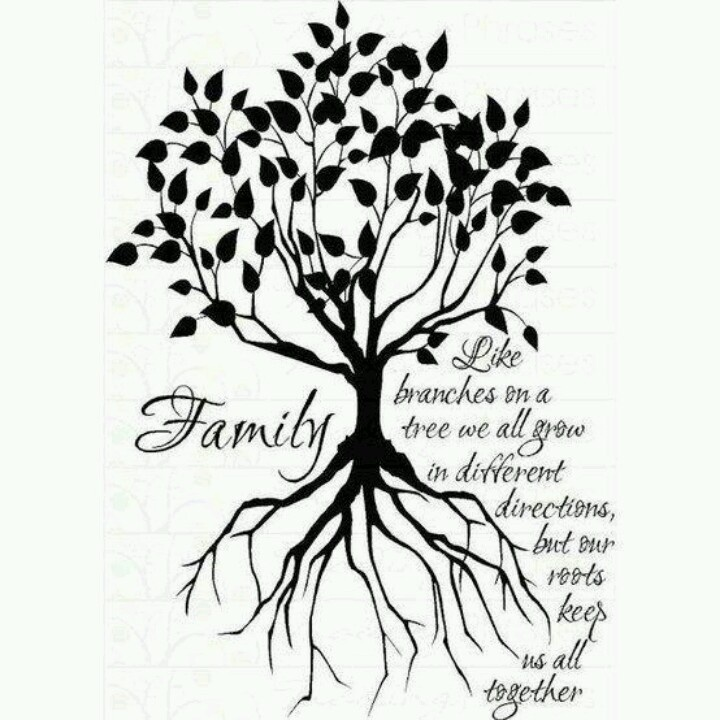 Family Tree Line Drawing