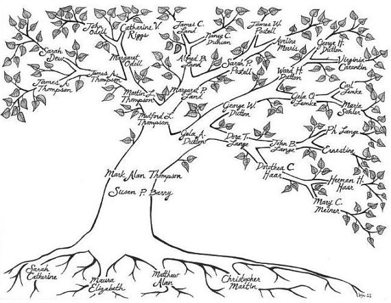 570x442 Custom Pen Amp Ink Hand Drawn Family Tree Family Trees, Family
