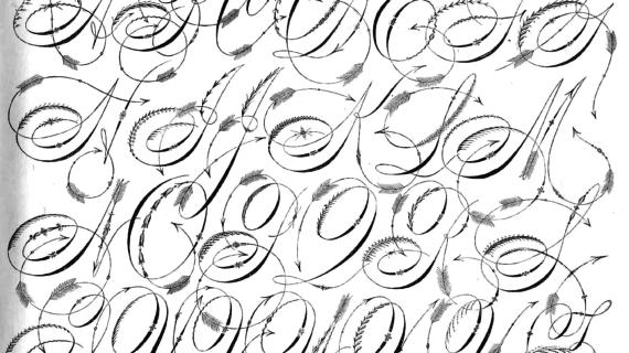 570x320 Drawings Of Fancy Letters