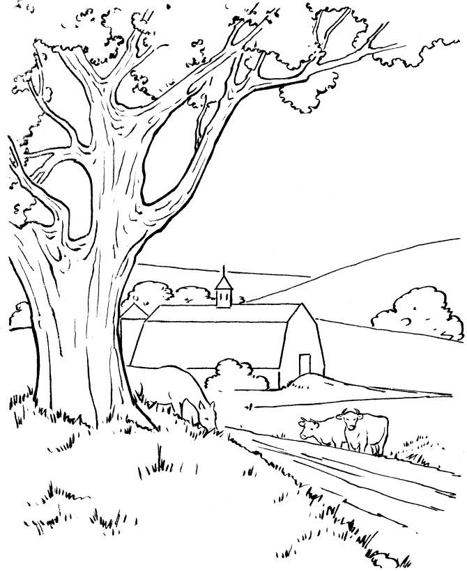 670x820 Farm Field Coloring Page