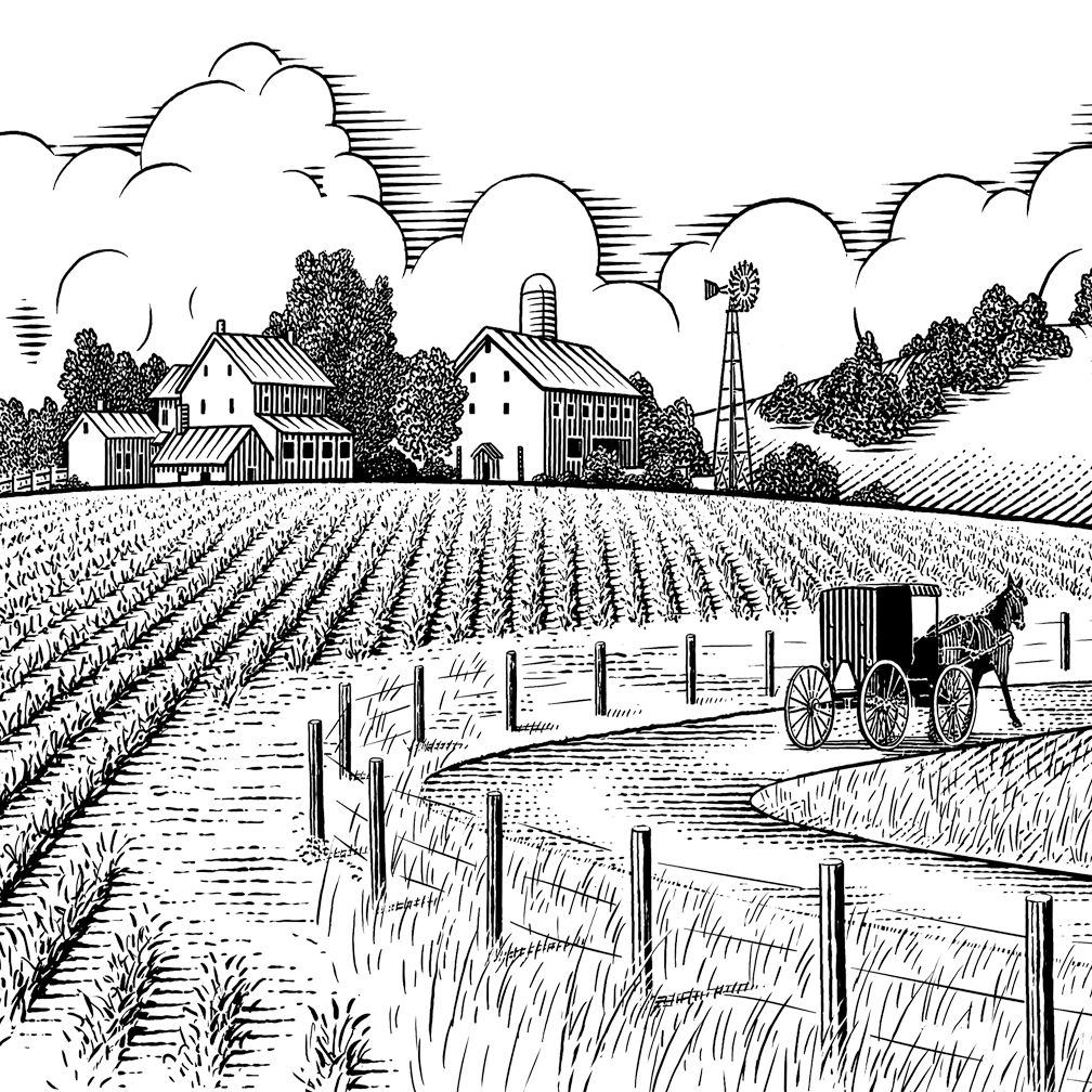 1008x1008 Amish Landscape Paintings Illustration Of Farm House And Amish