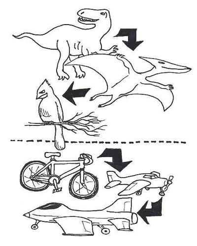 400x500 Of Bicycles And Bipeds Farming Flying Forms Roy Christopher