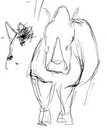 435x529 Life Drawing Branjo Farms