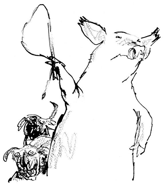 572x657 Animal Farm' Flawless! Eye Of Lynx