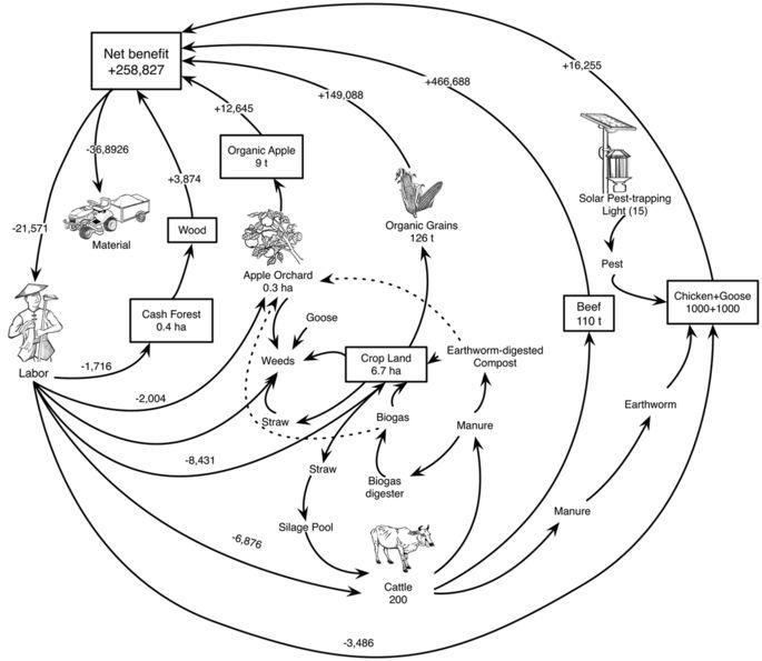 685x595 Biodiversity Management Of Organic Farming Enhances Agricultural