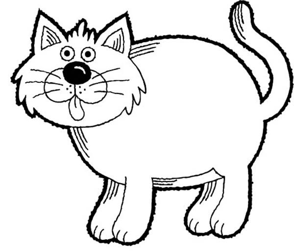 600x513 A Funny Drawing Of Fat Kitty Cat Coloring Page Kids Play Color