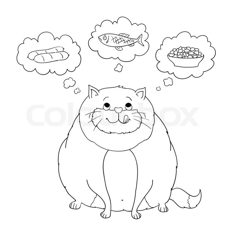 800x800 Funny Cartoon Fat Cat Thinking About Sausage, Fish, Food. Coloring