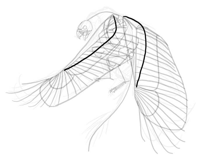 700x557 How To Draw A Griffin