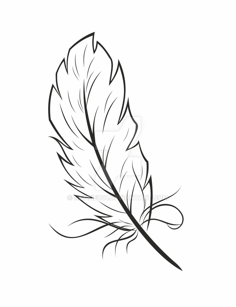 800x1042 Feather Graphic By Nettie001