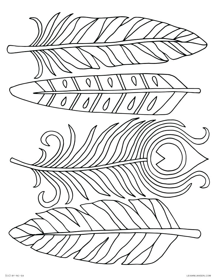 728x942 Coloring Pages. Feather Coloring Page
