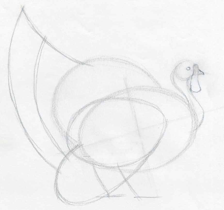 924x865 How To Draw A Turkey In Pencil
