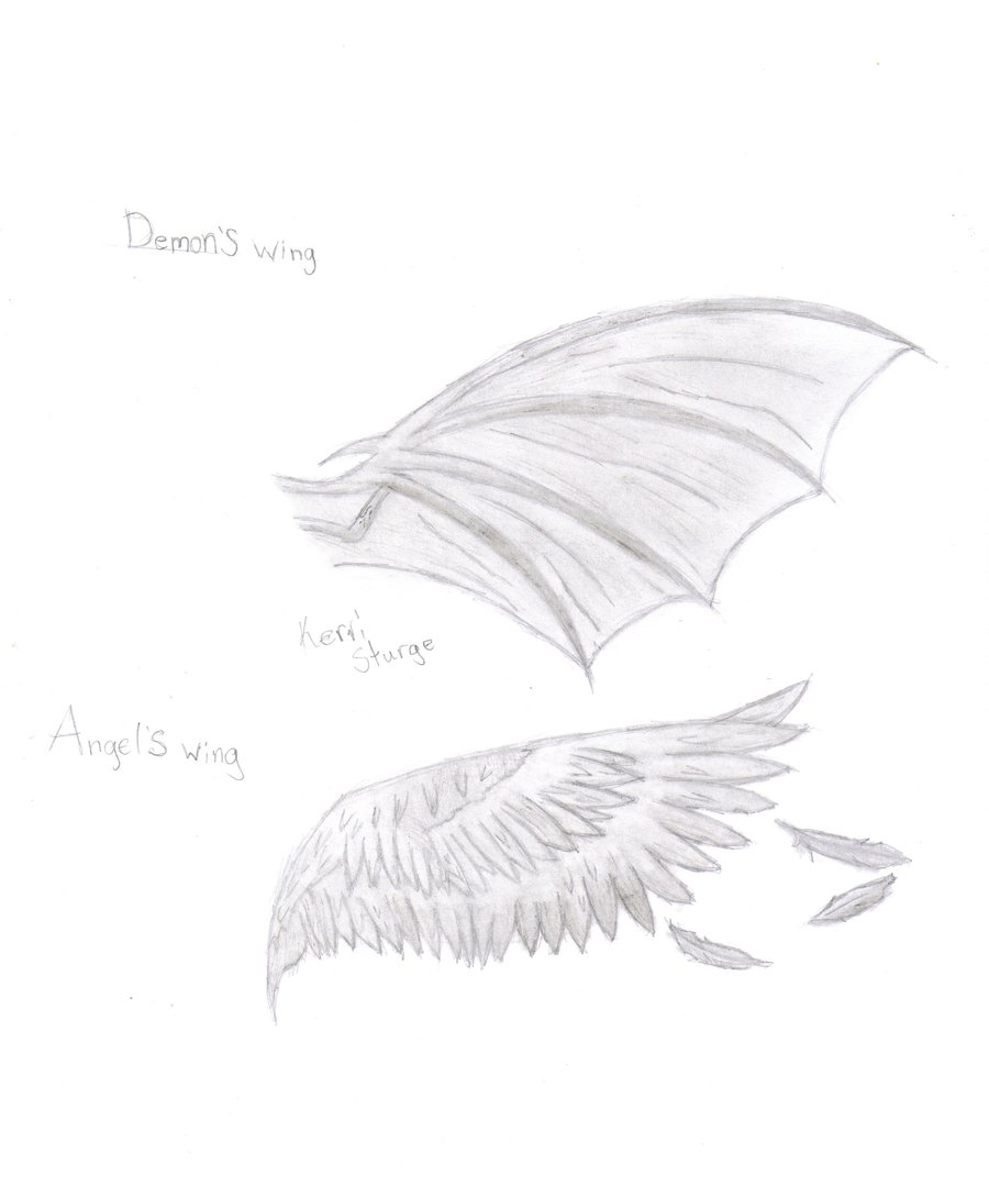900x1080 Angel And Demon Wings By Shadowdemon86