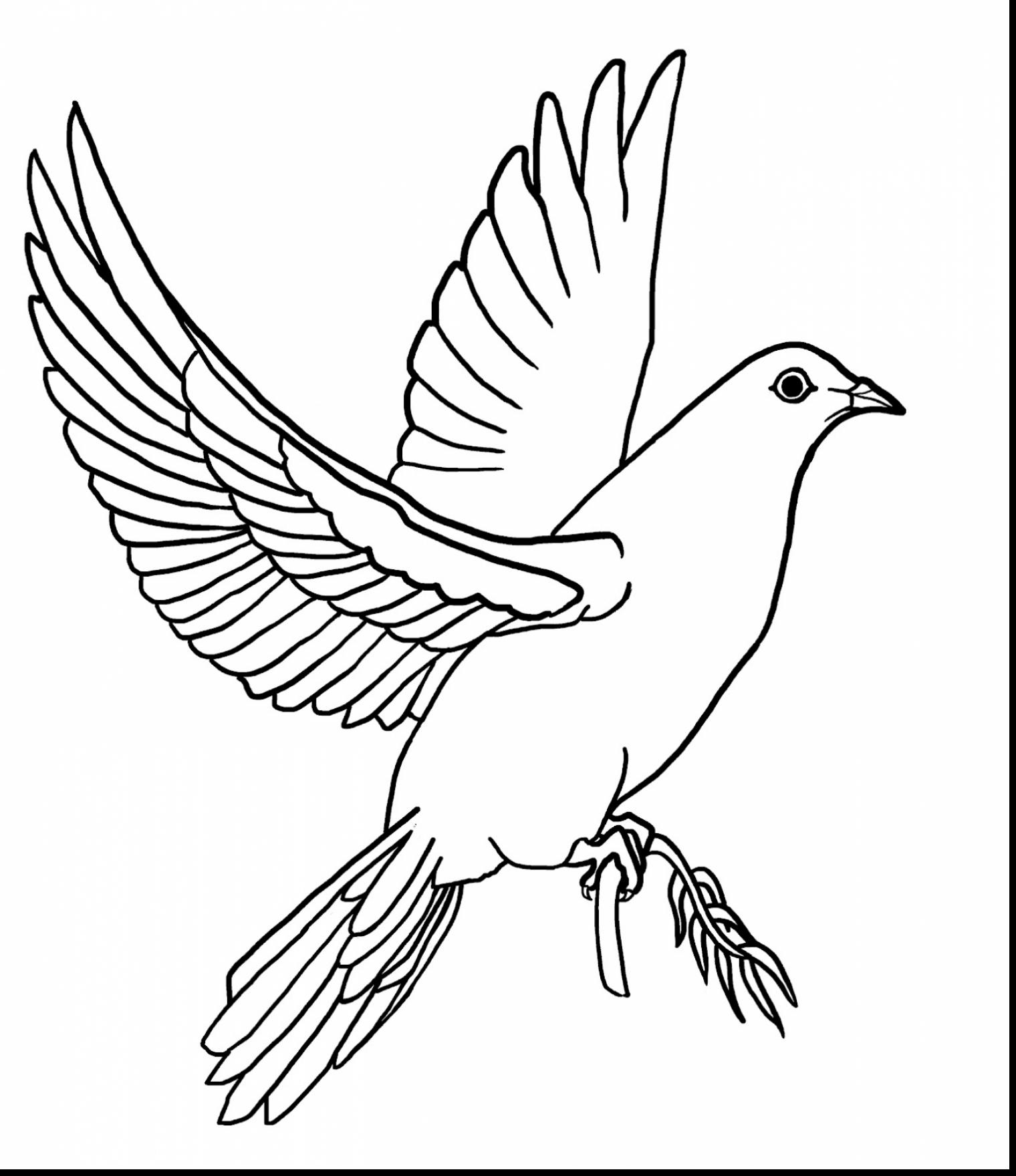 1520x1760 Extraordinary Dove Drawings Pencil With Dove Coloring Page