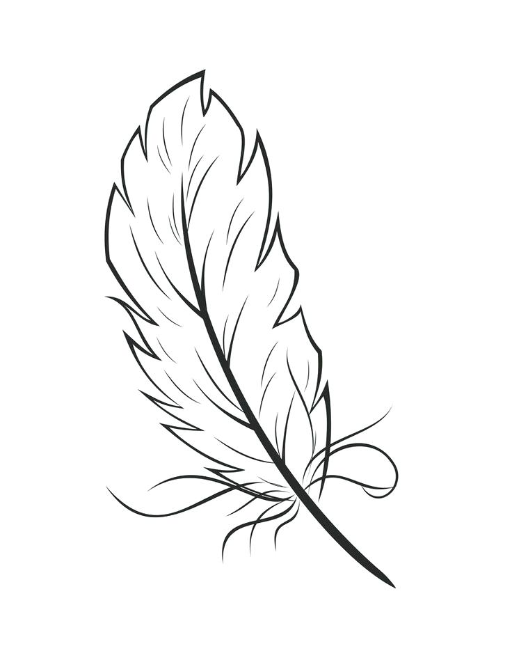 736x958 Feather Coloring Page Art Exhibition Feather Coloring Page Feather