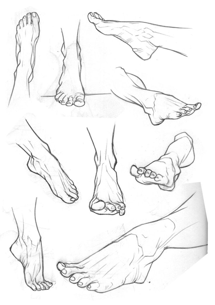736x1041 150 Best Character Anatomy Feet Images On Drawing
