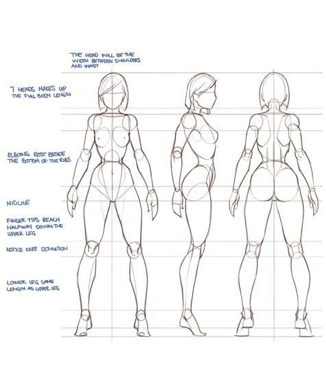 476x560 Enjoy A Collection Of References For Character Design Female